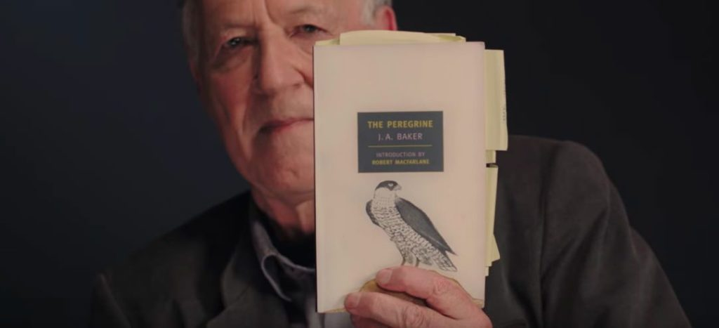 Werner Herzog Peregrine